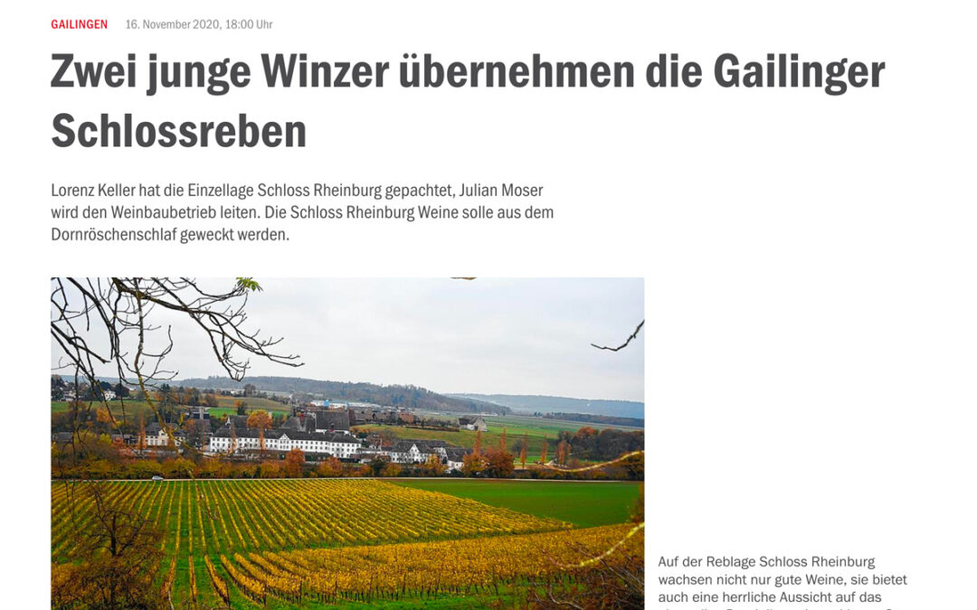 Zwei junge Winzer übernehmen die Gailinger Schlossreben